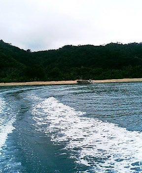 image/hasiken-2006-05-08T16:49:18-1.jpg