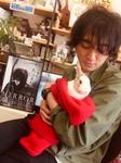 masutoshi rabbit.jpg