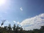 sky cloudd.JPG